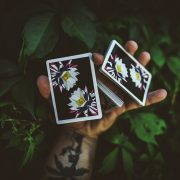 Carpe Noctem playing cards